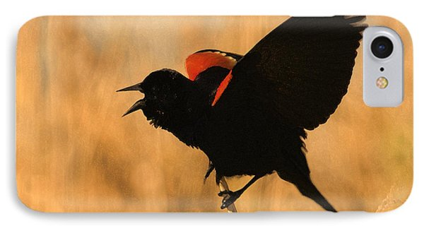 Singing At Sunset IPhone Case