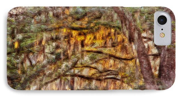Spanish Moss And Sunset IPhone Case