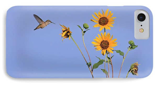 Summer Day Hummingbird IPhone Case