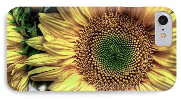 Sunflower 28 IPhone Case