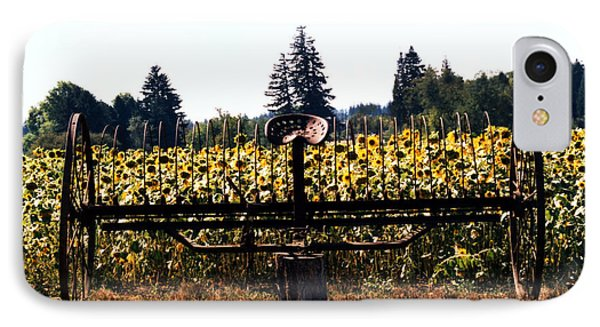 Sunflower Farm Scene IPhone Case