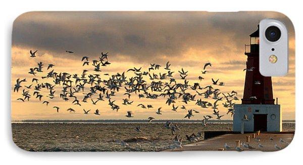 Sunrise Seagulls 219 IPhone Case