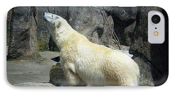 The Polar Pose IPhone Case