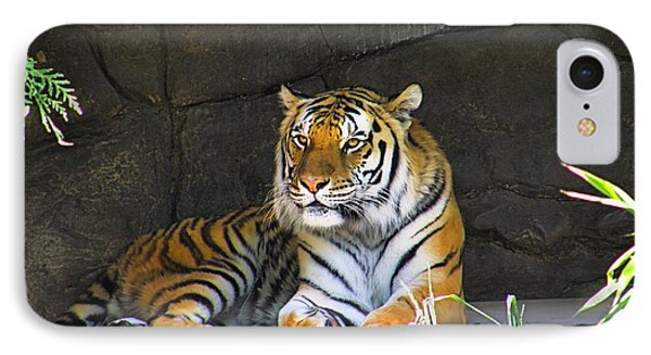 Tiger Life IPhone Case