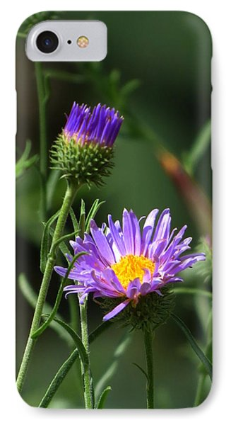 Touch Of Spring IPhone Case