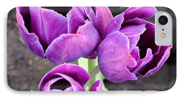 Tulips Queen Of The Night IPhone Case