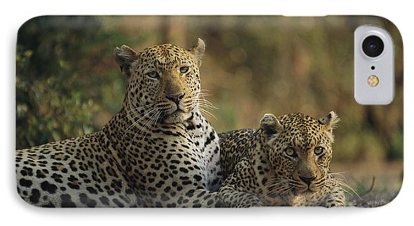 Republic Of South Africa iPhone 8 Case - Two Full Grown Leopardspanthera Pardus by Kim Wolhuter