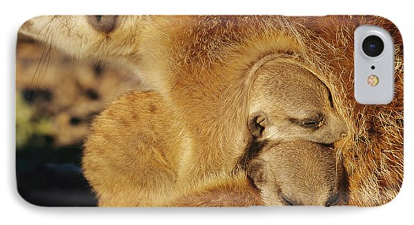 Republic Of South Africa iPhone 8 Case - Two Meerkat Pups Sleep Under The Arm by Mattias Klum