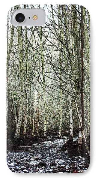 Walk Along The Dungeness IPhone Case