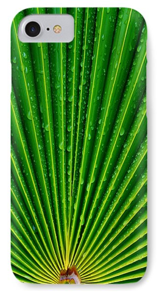 Waterdrops On Palm Leaf IPhone Case