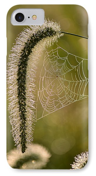 Webbed Tail IPhone Case