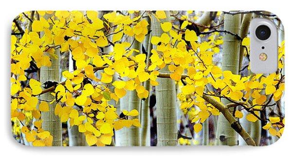 White Aspen Golden Leaves IPhone Case