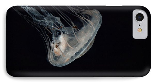 White Jelly In Black Space IPhone Case