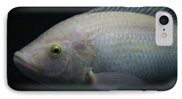 White Tilapia With Yellow Eyes IPhone Case