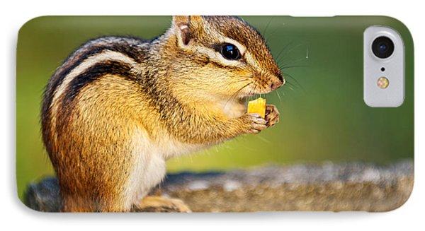 Wild Chipmunk  IPhone Case