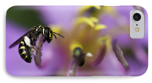 Yellow Faced Bee IPhone Case
