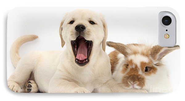 Yellow Lab Puppy With Rabbit IPhone Case