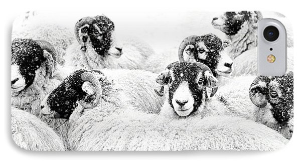 Sheep iPhone 8 Case -  In Winters Grip by Janet Burdon