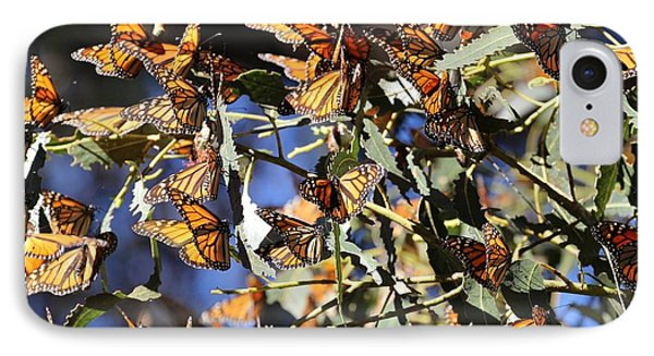 Monarch Cluster IPhone Case