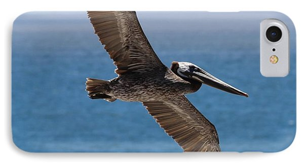 Pelican Flying Wings Outstretched IPhone Case