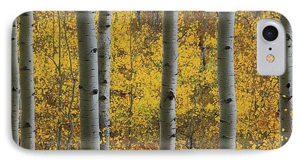 Aspen In Autumn At Mcclure Pass IPhone Case