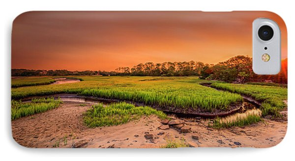 IPhone Case featuring the photograph Big Talbot Island by Peter Lakomy