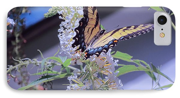 Butterfly Bush ,butterfly Included IPhone Case