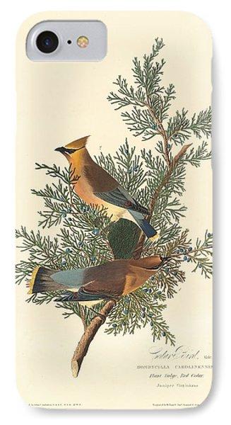 Cedar Bird IPhone Case