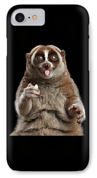 Close-up Lemur Slow Loris Isolated Black Background IPhone Case
