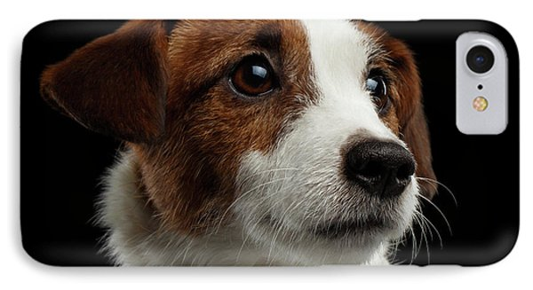 Dog iPhone 8 Case -  Closeup Portrait Of Jack Russell Terrier Dog On Black by Sergey Taran