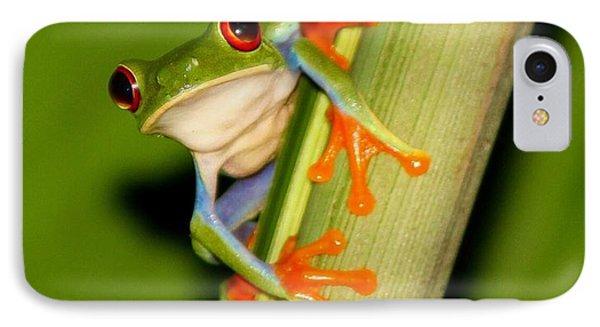 Feeling Froggy IPhone Case