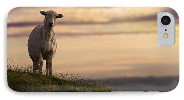 Sheep iPhone 8 Case - On The Top Of The World by Angel Ciesniarska