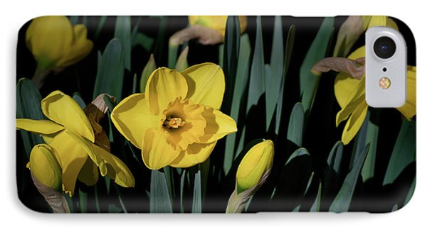 Camelot Daffodils IPhone Case