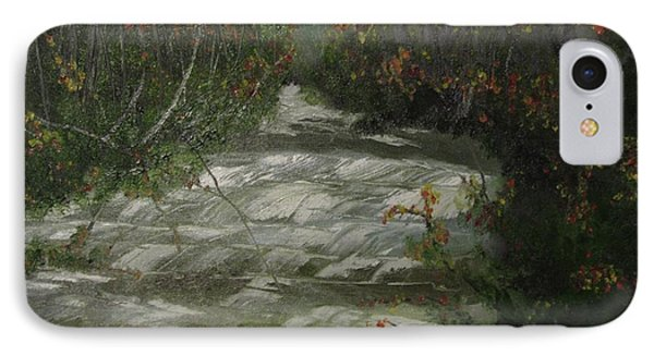 Peavine Creek IPhone Case