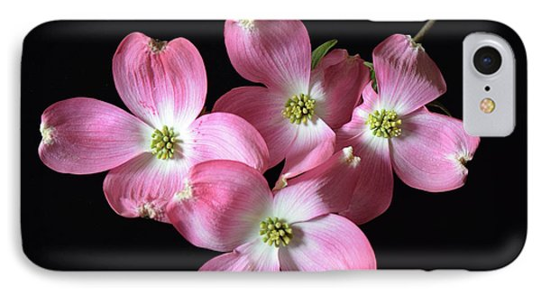 Pink Dogwood Branch IPhone Case