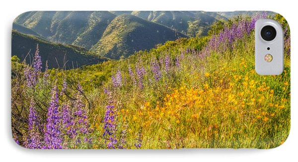 Poppies And Lupine IPhone Case