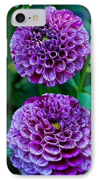 Purple Passion Dahlia  IPhone Case
