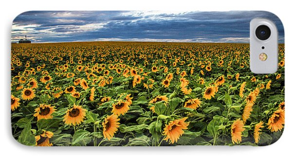 Sunflower Farm IPhone Case
