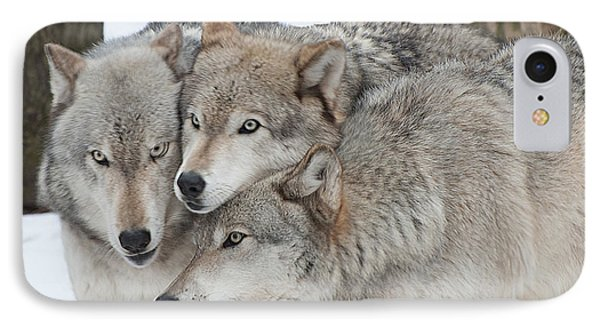 Three Wolves Are A Crowd IPhone Case