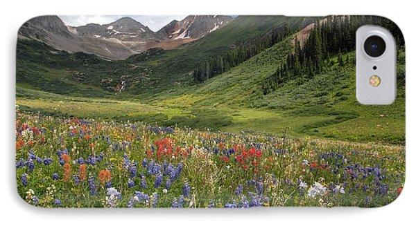 Alpine Flowers In Rustler's Gulch, Usa IPhone Case