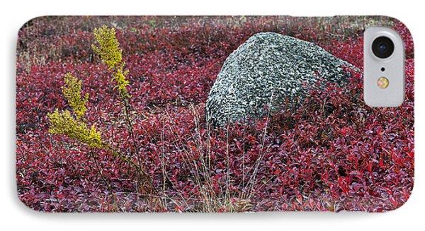 Autumn Blueberry Field IPhone Case