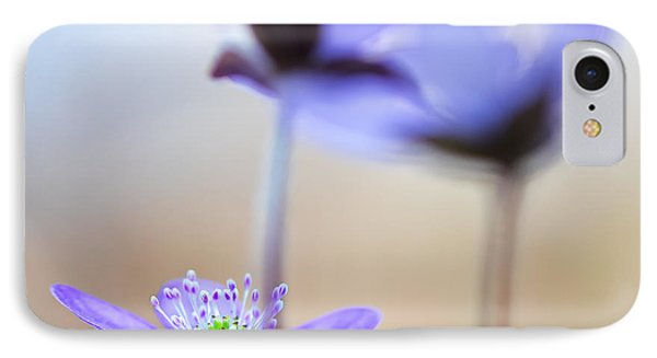 Blue Spring Wild Flower IPhone Case