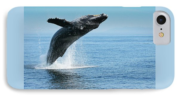 Breaching Humpback Whales Happy-1 IPhone Case