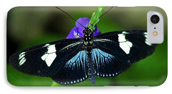 Doris Longwing Butterfly IPhone Case