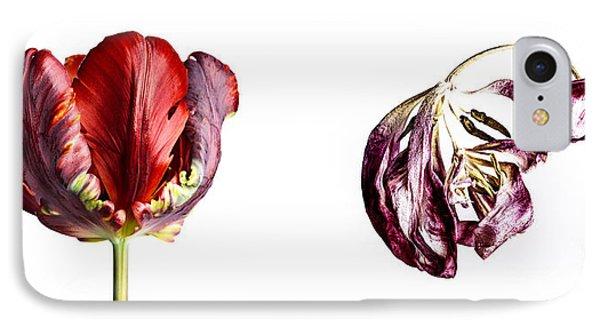 Tulip iPhone 8 Case - Fading Beauty by Nailia Schwarz