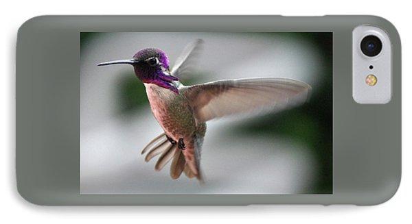 Male Anna's In Flight IPhone Case