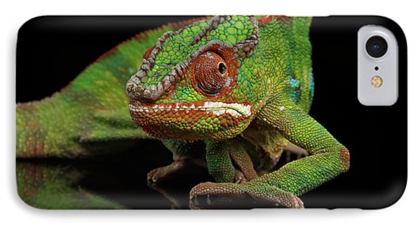 Sneaking Panther Chameleon, Reptile With Colorful Body On Black Mirror, Isolated Background IPhone Case