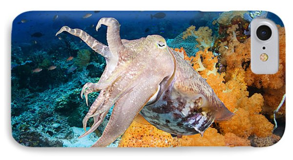 Reef Squid IPhone Case