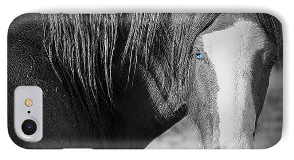 Wild Mustang Horse IPhone Case