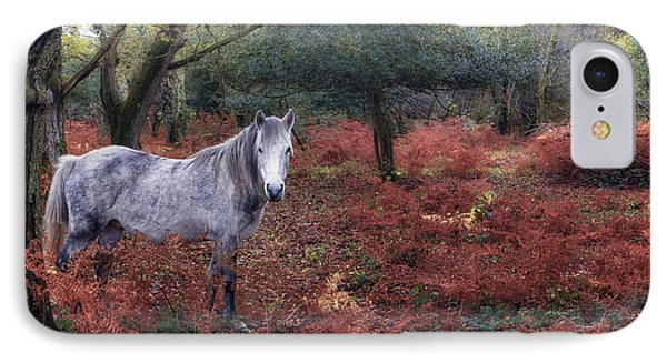 New Forest - England IPhone Case
